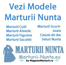 banner1marturiinuntaeu copy